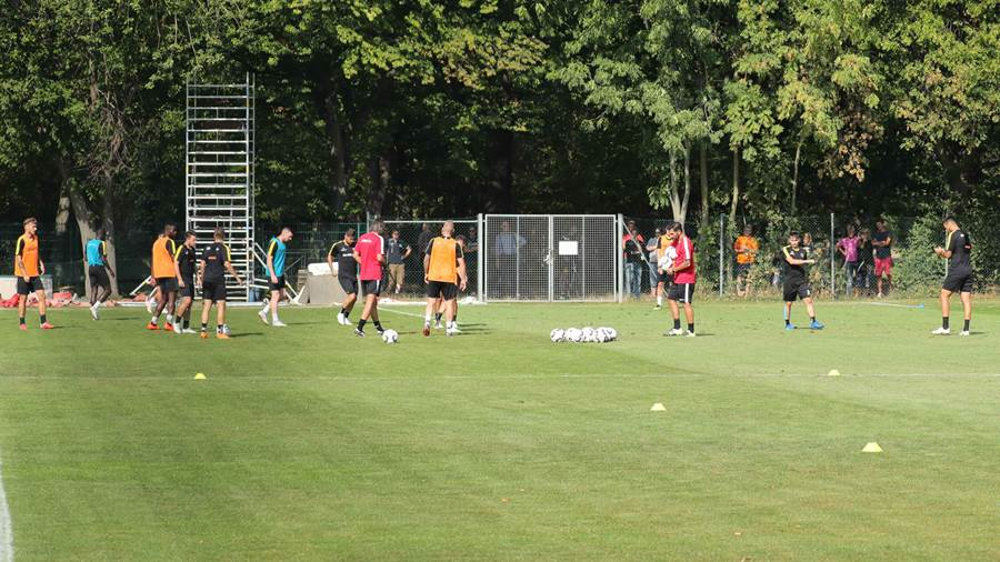 Die Trainingsform der SGD.